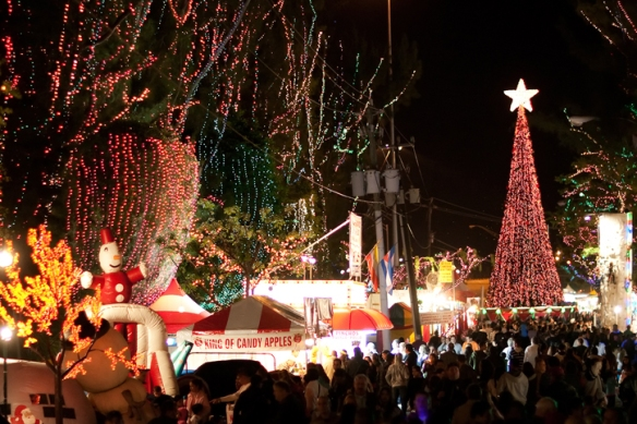 santas enchanted forest kicks off its 34th season with its annual tree lighting ceremony and new christmas tree light show spectacular - Enchanted Forest Christmas Trees